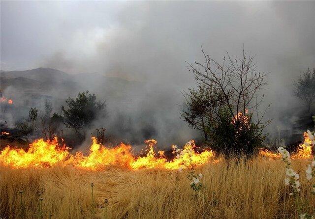 4 هکتار حیات وحش میانکاله در آتش سوخت
